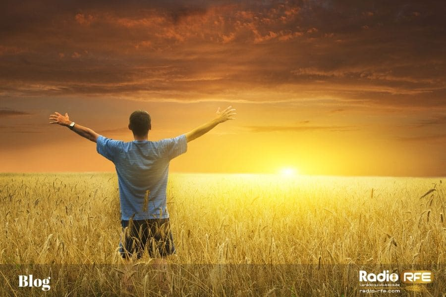 "Colossiens 3:15 "" Soyez reconnaissants"""